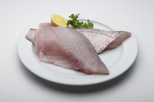 Snapper Fillets-1
